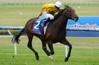 weekend king doncaster mile
