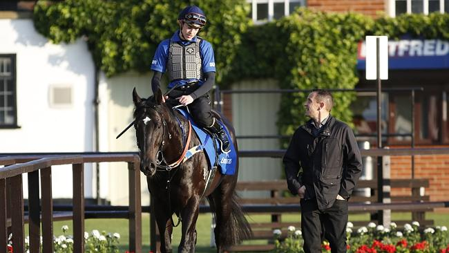James Doyle chats with Chris Waller after Brazen Beau's morning workout at Newmarket