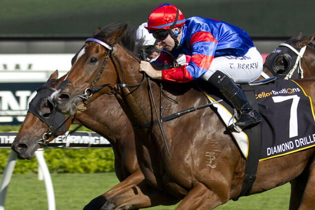 Diamond Drille (Tommy Berry, outside, red & blue) trained by Gai Waterhouse wins the Queen Of The Turf Stakes (Group 1) at Randwick on April 19, 2014 - photo by Martin King / Sportpix - copyright