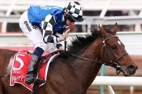 Protectionist was dominant winning the 2014 Melbourne Cup