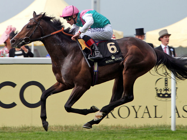 Snow Sky was a devastating winner of the prestigious Hardwicke Stakes at Royal Ascot earlier this year