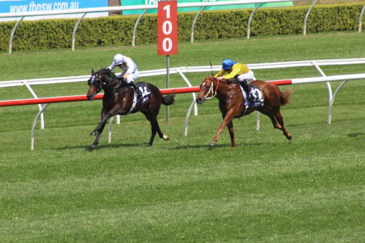 Vancouver (inside) draws away from Sooboog to win the listed Breeders Plate on Epsom Day at Randwick