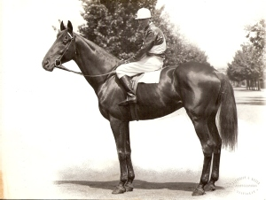 Uncle Sam won the Caulfield Cup in 1912 & then again in 1914. 7 horses have won the race on two occassion, none have ever won 3.
