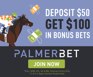 PALMER-deposit-50-get-100-bonus-300x250