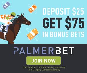 palmerbet-25-get-75-bonus-300x250