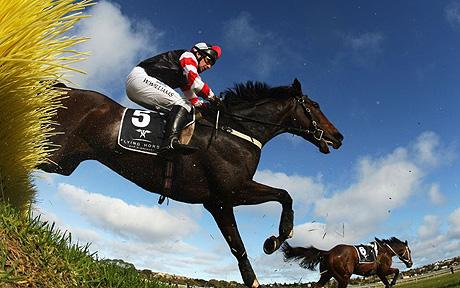 Warrnambool_jumps