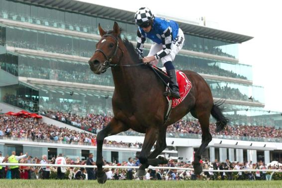 PROTECTIONIST 2014 MELBOURNE CUP