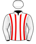Anchor Bid silks