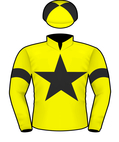 Storm Force Silks.jpeg