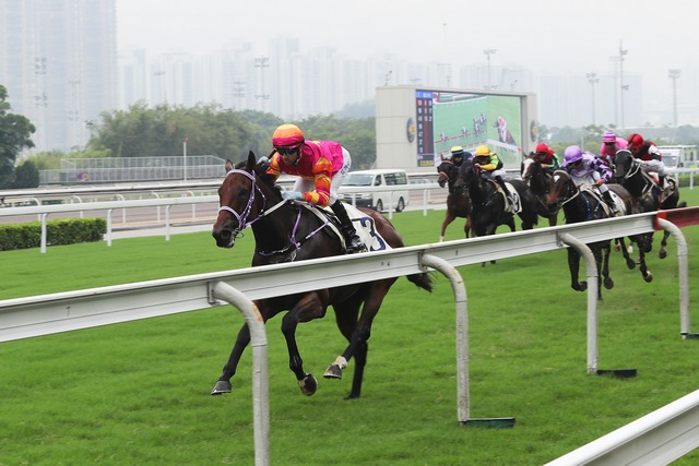 Top Beautiful Sha Tin 030917