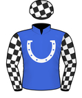 aus bloodstock silks'.jpeg