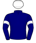 LLOYD WILLIAMS SILKS