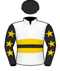 Slade Bloodstock SIlks.jpeg