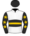 Slade Bloodstock Silks