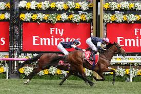2017 MELBOURNE CUP FINISH