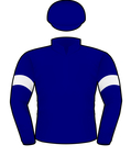 LLOYD WILLIAMS #2 SILKS.jpeg