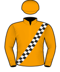 DAVID PAYNE SILKS.jpeg