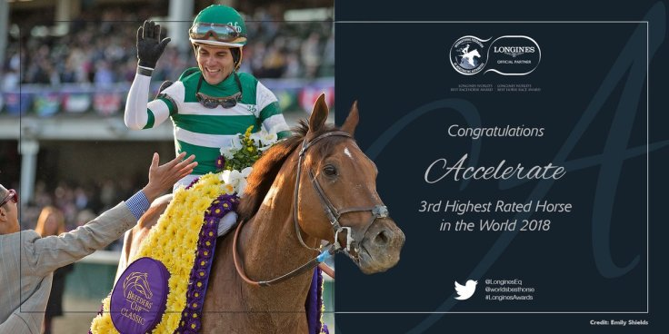 Accelerate 3rd Highest Rated Horse in World in 2018.jpg