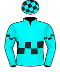 HOUTZEN SILKS.jpeg