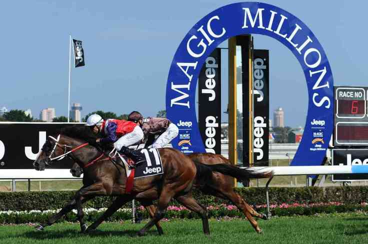 magic-millions-winning post