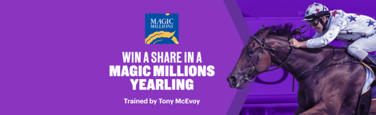 win a share in a magic millions horse 1024x314