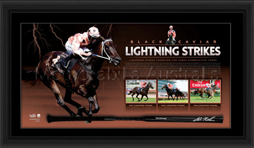 Black Caviar Lightning_Strikes whip watermarked.jpg