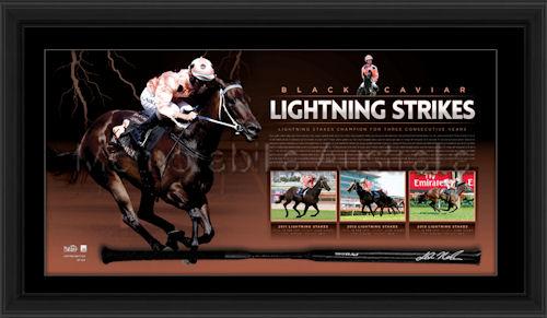 Black Caviar Lightning_Strikes whip watermarked.jpg