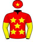 CHINA HORSE CLUB SILKS.jpeg