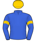 santa ana lane silks