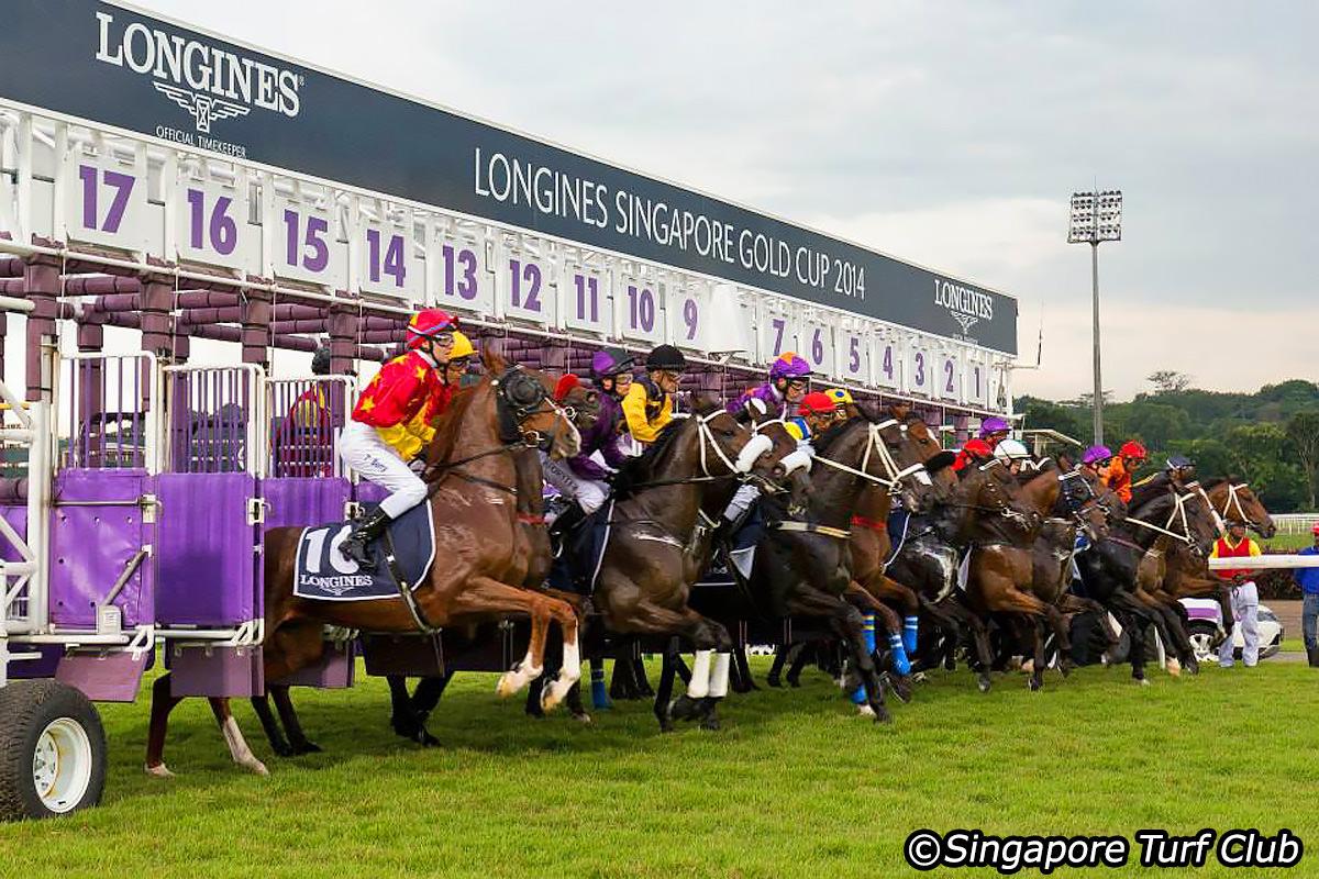 free singapore horse racing tips – Weekend King Racing