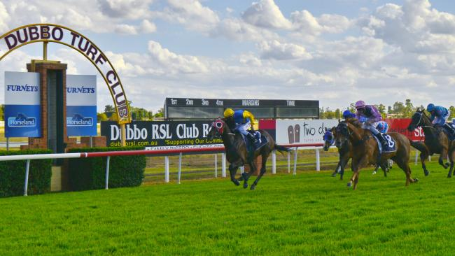 dubbo-turf-club.jpeg