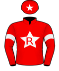 Win The Flag Silks.jpeg