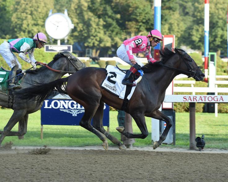 tax race horse usa.jpg